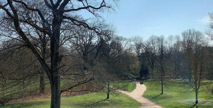 Provisorischer Weg im Gutspark, Hamburg-Farmsen-Berne, April 2019; Foto: Marc Buttler