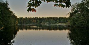 Bramfelder See in Hamburg, Herbst 2010; Foto: flamenc, commons.wikimedia.org [CC BY-SA 3.0]