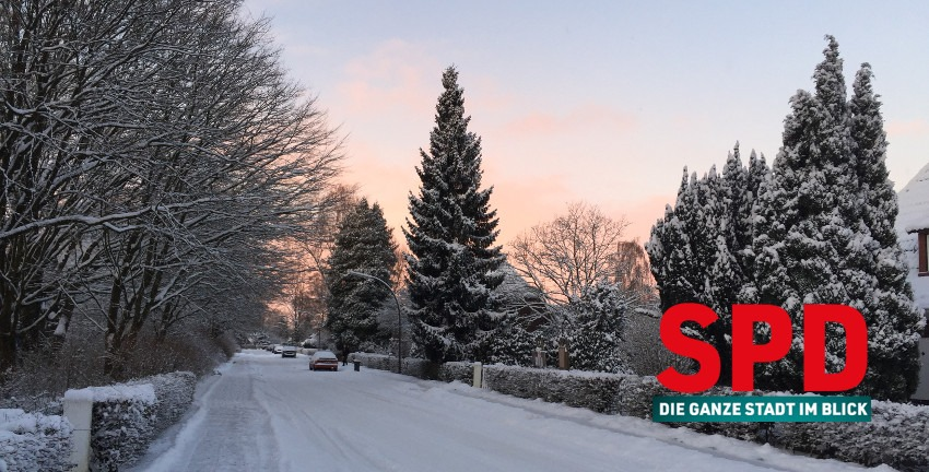SPD: Winter in Farmsen-Berne; Foto: Marc Buttler