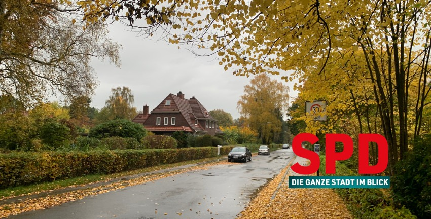 Lienaustraße im Herbst, Hamburg-Farmsen-Berne, (c) 2020 Marc Buttler/SPD