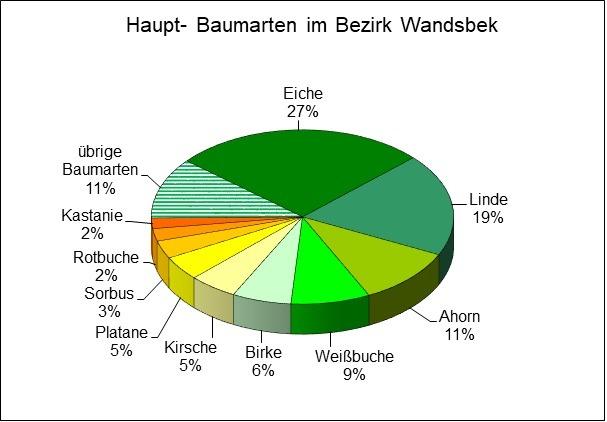 Die am häufigsten auf Straßenflurstücken in Wandsbek vorkommende Baumart, © Bezirksamt Wandsbek, 02/2020